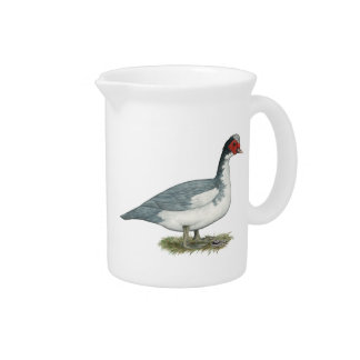 Muscovy Blue Pied Drake Drink Pitcher