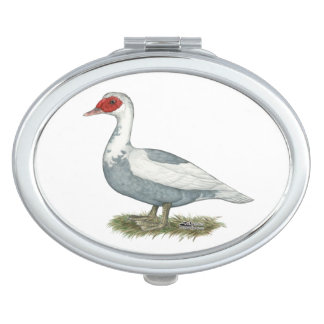 Muscovy Blue Pied Duck Compact Mirror