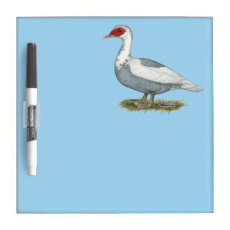 Muscovy Blue Pied Duck Dry Erase Board