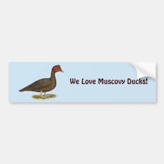 Muscovy Drake Chocolate Bumper Sticker