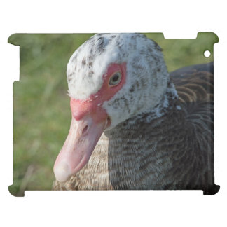 Muscovy Duck Case For The iPad