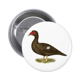 Muscovy Duck Chocolate Pinback Button