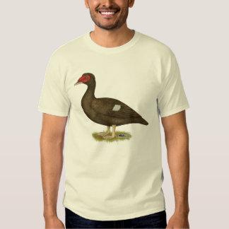 Muscovy Duck Chocolate Shirt