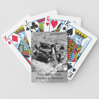 Muscovy duck hen and ducklings black and white bicycle playing cards