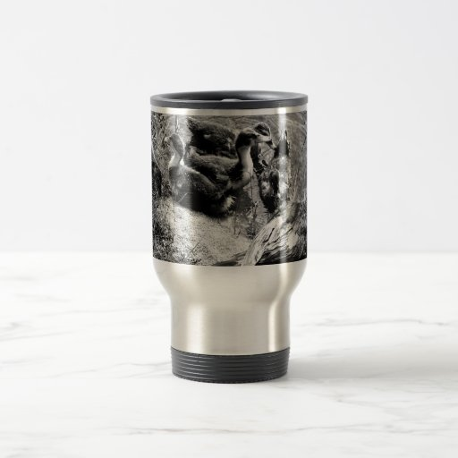 Muscovy duck hen and ducklings black and white 15 oz stainless steel travel mug