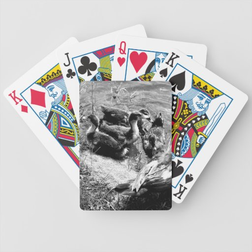 Muscovy duck hen and ducklings black and white bicycle card decks