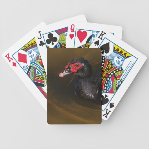 Muscovy Duck Bicycle Poker Deck