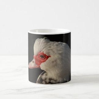 Muscovy duck portrait classic white coffee mug