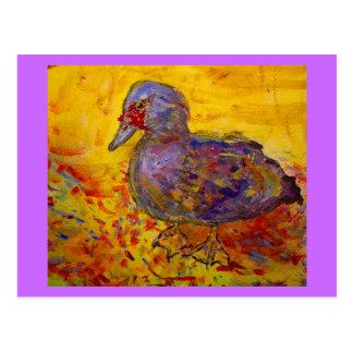 muscovy duck postcard