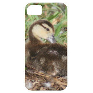 Muscovy Duckling Case-Mate Barely There iPhone 5/5