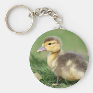 Muscovy Duckling Keychain