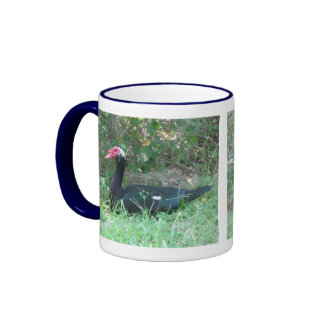 Muscovy Red-Faced Duck Ringer Coffee Mug