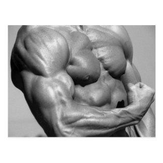 Muscular Chest Postcard