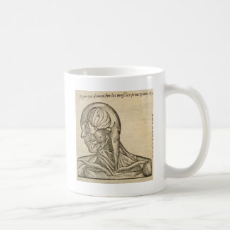 Musculature of the Head and Neck Coffee Mug