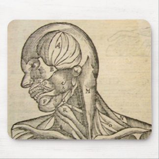 Musculature of the Head and Neck Mouse Pad