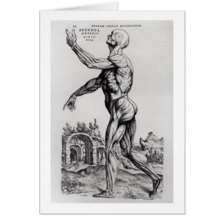 Musculature Structure of a Man (b/w neg & print) Greeting Card