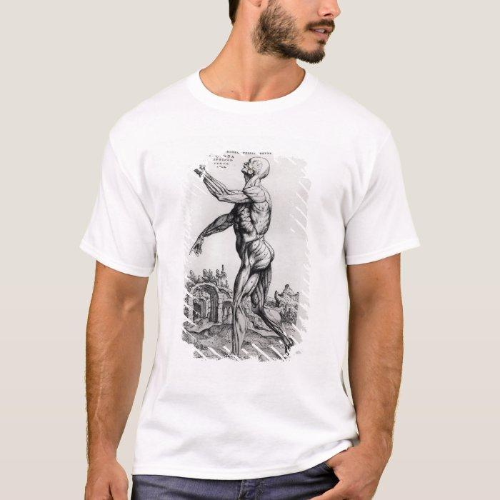 Musculature Structure of a Man (b/w neg & print) T-Shirt