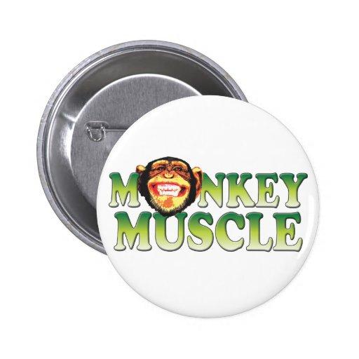 Músculo del mono pins