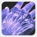Músculos de la mano calcomanía cuadradase