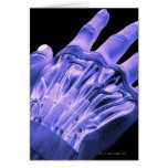 Músculos de la mano felicitación