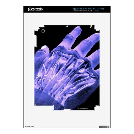Músculos de la mano pegatinas skins para iPad 3