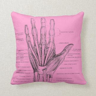 Músculos de los dedos de la mano - anatomía almohada