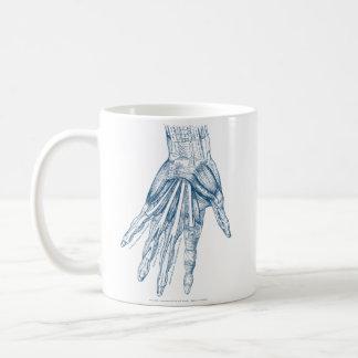 Músculos del arte de la anatomía del vintage del taza de café