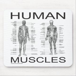 Músculos humanos y anatomía alfombrilla de ratón