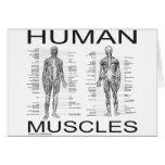 Músculos humanos y anatomía tarjeta