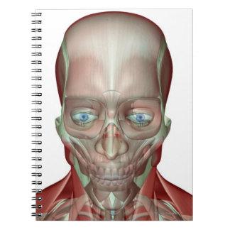 Musculoskeleton de la cabeza y del cuello 7 libreta
