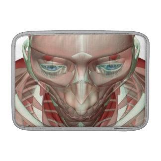 Musculoskeleton de la cabeza y del cuello fundas MacBook