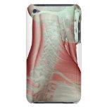 Musculoskeleton del cuello 3 iPod touch Case-Mate protector