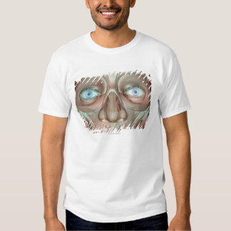 Musculoskeleton of the Face 3 T Shirt