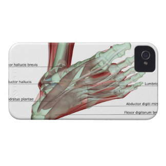 Musculoskeleton of the Foot Case-Mate iPhone 4 Case