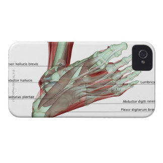 Musculoskeleton of the Foot iPhone 4 Cover