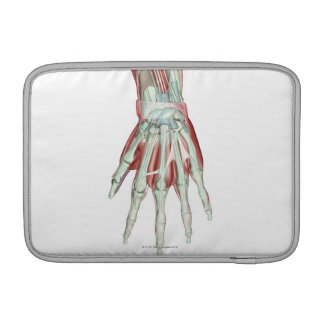Musculoskeleton of the Hand 2 Sleeve For MacBook Air