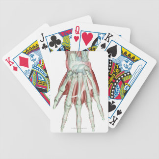 Musculoskeleton of the Hand 2 Bicycle Poker Cards
