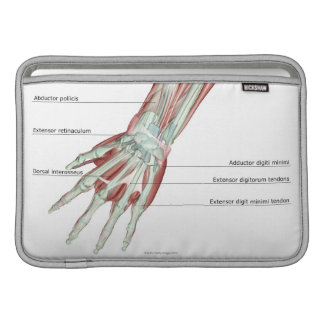 Musculoskeleton of the Hand MacBook Sleeve