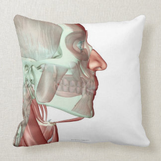 Musculoskeleton of the Head and Neck 6 Throw Pillow