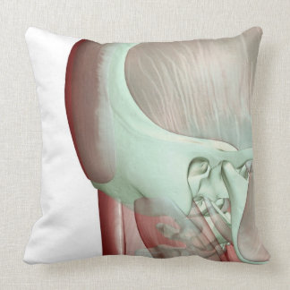 Musculoskeleton of the Head and Neck 8 Throw Pillow