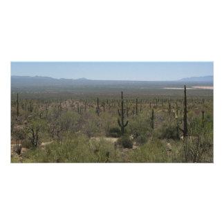Museo del desierto del Sonora Tarjetas Personales Con Fotos