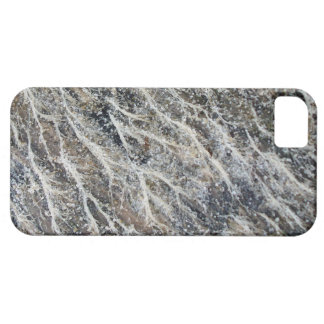 Musgo blanco en el Driftwood iPhone 5 Carcasa