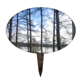 Musgo de Blakemere en el bosque de Delamere Decoración Para Tarta