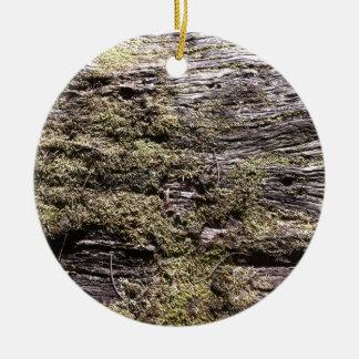 Musgo de sequía en el árbol caido que decae en adorno navideño redondo de cerámica