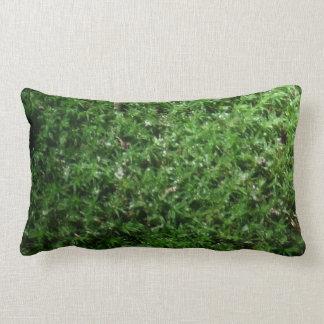 Musgo de tierra verde botánico al aire libre cojín