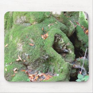 Musgo en árbol de la secoya alfombrillas de ratones