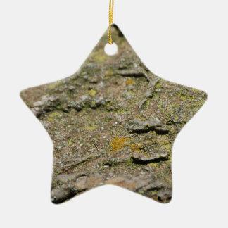 Musgo en roca adorno navideño de cerámica en forma de estrella