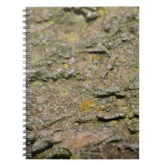 Musgo en roca libros de apuntes con espiral