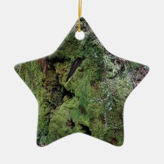 Musgo en secoya caida adorno de cerámica en forma de estrella