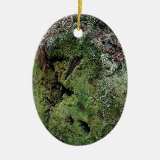 Musgo en secoya caida adorno ovalado de cerámica